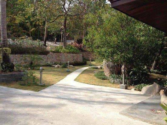 Tanote Villa Hill: Devant l'accueil de l'hôtel