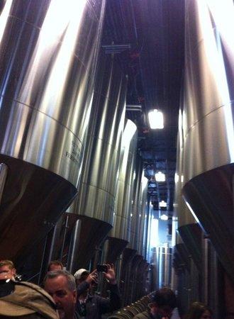 Saint Arnold Brewing Company : Fermenter tanks