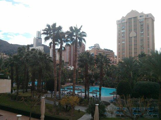 Melia Benidorm: Jardín y piscina