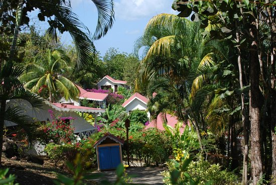 Ti Kaye Resort & Spa : lovely tropical setting and grounds