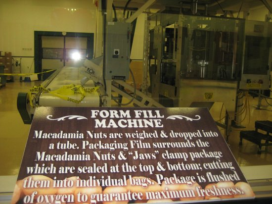 Hamakua Macadamia Nut Co: one of the many machines used at the facility