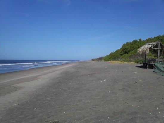 Playa Las Penitas : Pacafic Ocean