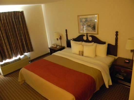 Comfort Inn Indianapolis Airport- Plainfield : King Guestroom