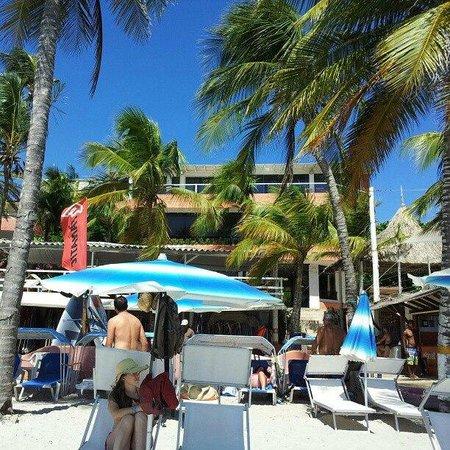 Hotel Surf Paradise: Vista do hotel, na praia