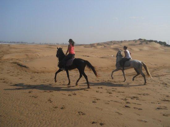La Maison du Cheval: Nos cavalières