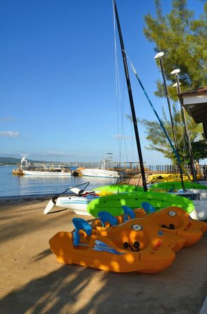 Jewel Paradise Cove Resort & Spa Runaway Bay, Curio Collection by Hilton: Beach Activities