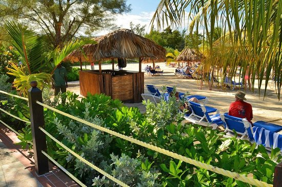 Jewel Paradise Cove Resort & Spa Runaway Bay, Curio Collection by Hilton: Beach view