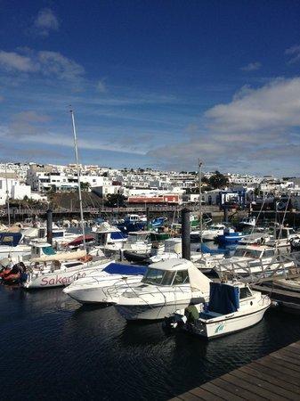 Lomo Blanco Apartments : The Port