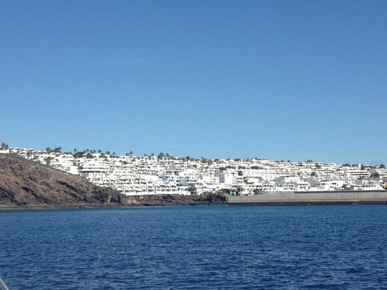 Lomo Blanco Apartments : View from boat of coast