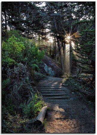 San Francisco Bay: Lots of hiking around the Bay