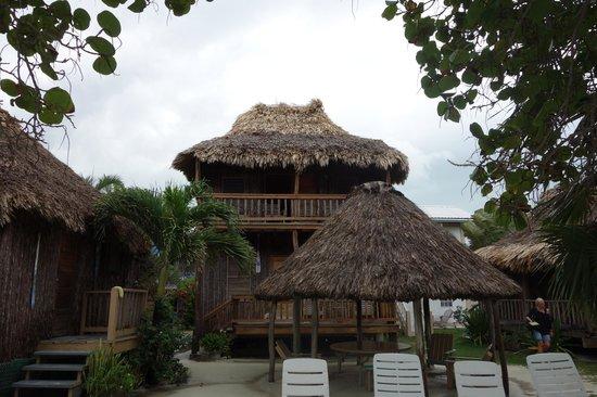 hotel del rio 1