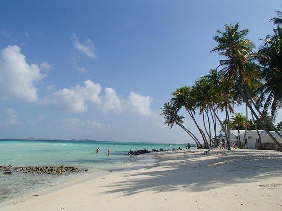 Shadow Palm Hotel: plage privee bikini autorisé