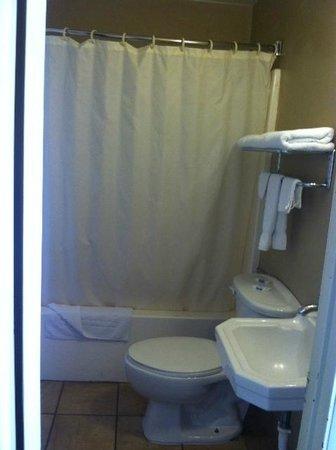 Grande Vista Motel : Small clean bathroom