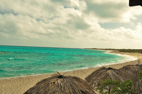 Melia Buenavista: la plage magnifique