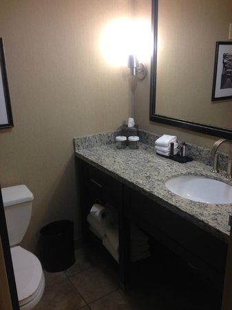 Embassy Suites by Hilton Hotel Des Moines Downtown: Nice bathroom & good products