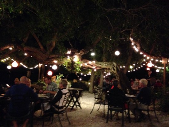 Mar Vista Dockside Restaurant and Pub: Dining under the Banyan Trees