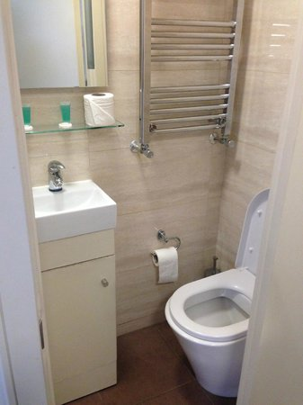 Pembury Hotel: Sink and toilet