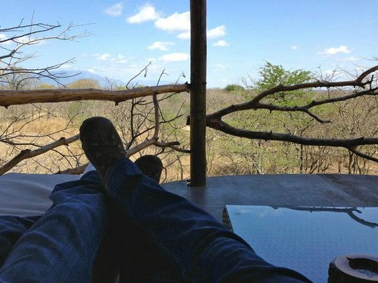 Pezulu Tree House Game Lodge : View from Marula balcony.