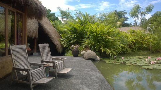 Sapulidi Bali Resort & Spa: pond view in front of the room