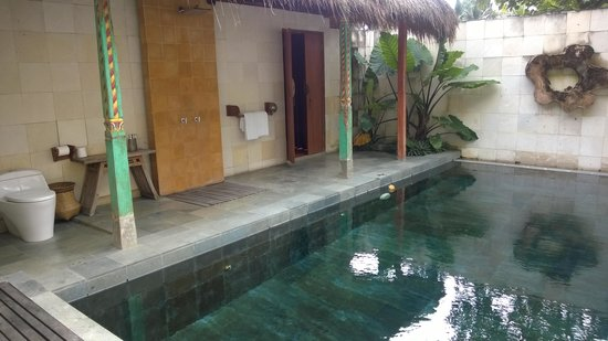Sapulidi Bali Resort & Spa: private swimming pool