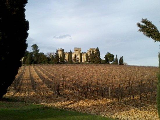 Hostellerie Chateau des Fines Roches: Arrivée au château
