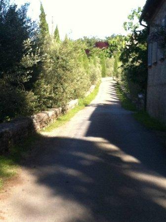 Castello di Meleto: Chegada ao hotel