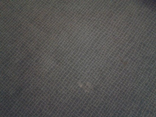 Novotel Cardiff Centre : carpet needs cleaning or replaced