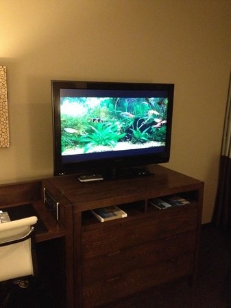 The Oxford Hotel: Otra TV con buen detalle