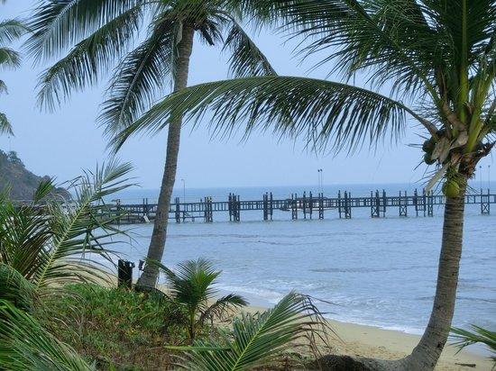Saree Samui : la plage vue de la piscine