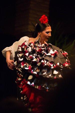 Шоу - Picture of Museo del Baile Flamenco, Seville ...