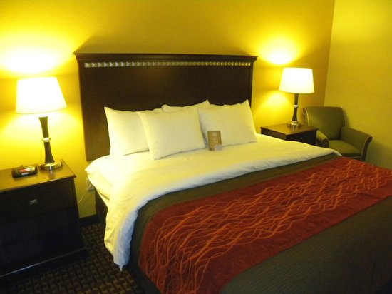 Comfort Inn & Suites Regional Medical Center: New King Room