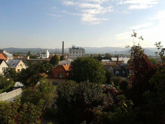 Nové Mesto nad Váhom, Slovensko: Elfa Pharm view