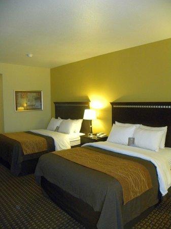 Comfort Inn & Suites Regional Medical Center: Two Queens