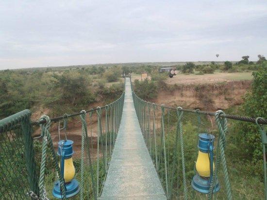 Ilkeliani Camp: Swing bridge at Ilkeliani