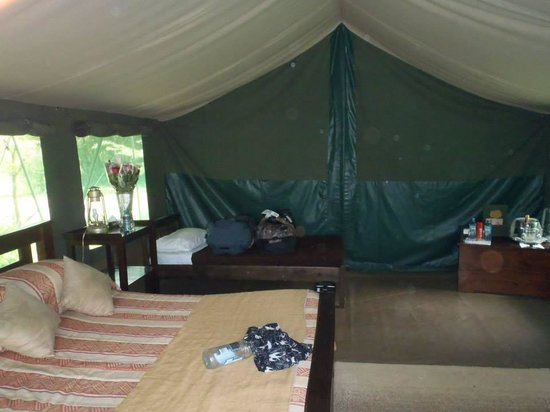 Ilkeliani Camp: Tent at Ilkeliani