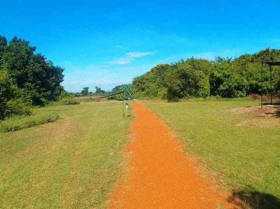 Ilkeliani Camp: Path at Ilkeliani