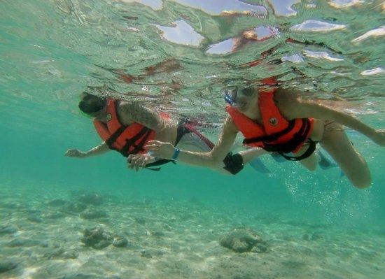 Playa del Carmen Tours: Snorkeling!