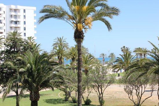 Hipotels Cala Millor Park : вид с балкона первого этажа