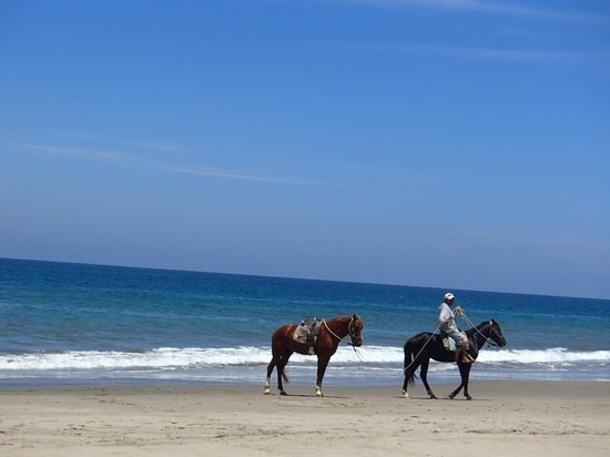 Hotel Casa de Playa: View from room