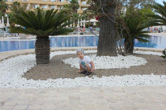 Hipotels Cala Millor Park: территория