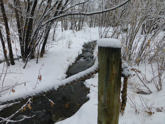 Marriott's Summit Watch: meandering creek at the resort