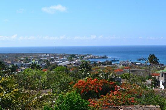 Galapagos Eco Friendly: vista desayunando!!!!!!!!