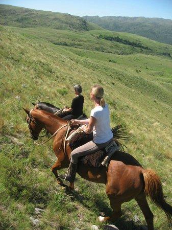 Dos Lunas Horse RIding Lodge : cabalgata 1