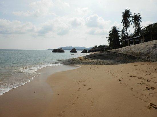 Lazy Day's Samui Beach Resort: Small Beach