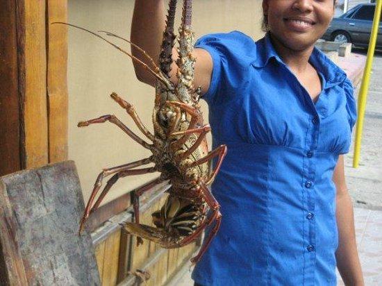 Restaurant La Ponderosa del Mar: Friend was picking out his lobster