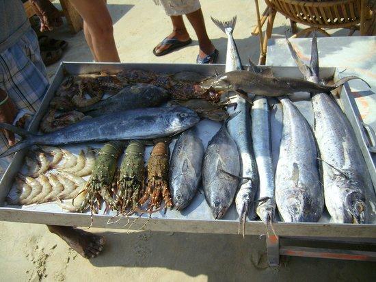 Hotel Colva Kinara : В пляжном шейке предлагают приготовить только что выловленную рыбу.
