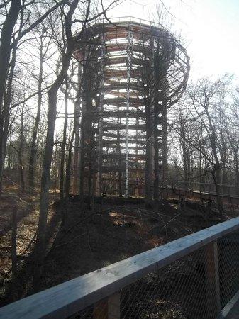 Naturerbe Zentrum Ruegen: Blick auf den Turm