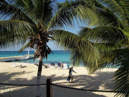 Nachi Cocom Beach Club & Water Sport Center: Nachi Cocum