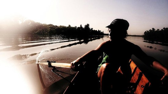 Tigre Rowing Tours