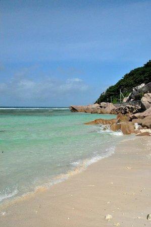 Anse Gaulettes Beach: Spiaggia Anse Gaulettes